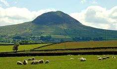 Slemish, County Antrim: One theory is that St. Patrick herded sheep in the countryside around Slemish after being captured by Irish raiders. research