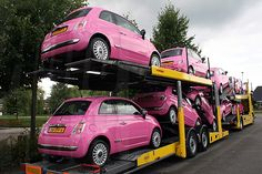Roze Fiat's 500