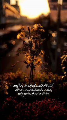 مقولات مبدعة Ali Quotes, Quran Quotes, Photo Quotes, Words Quotes, Qoutes, Beautiful Arabic Words, Arabic Love Quotes, Sweet Words, Love Words