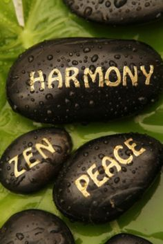 Zen Running For Effective Results Image Zen, Scary Words, Zen Rock, Buddha Zen, Relax, Paz Interior, Zen Art, Buddhism, Painted Rocks
