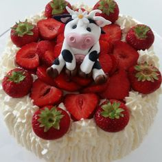 Little moo cake