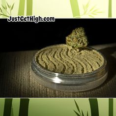Carefully selected mothers and 'fathers' are used to create our cannabis genetics. We use the most stable, viable and potent plants to produce our cannabis seeds. Seed Shop, Cbd Oil For Sale, Puff And Pass, Weed Seeds, Cannabis Oil, Cannabis News, Buy Weed Online, Smoking Weed, Herbs