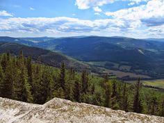 szlaki i bezdroża: Góry Opawskie - na Biskupią Kopę