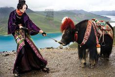 Tibetan fashion- Nicoline Patricia Malina- Harpers Bazaar