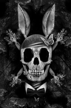 Playboy Skull by Obery Nicolas