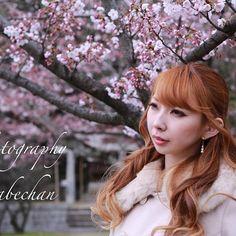 【speedkingkentadesuby】さんのInstagramをピンしています。 《2016年3月27日撮影 モデル  神崎翔子😄 使用カメラ EOS5DmarkⅢ #ファインダー越しの私の世界#model#fukuoka#japan#girl#photo#photography#Canon#photoshoot#モデル#カメラ好きな人と繋がりたい#カメラ#camera#写真好きな人と繋がりたい#写真#被写体募集#ポートレート#portrait#福岡写真部#ポートレート部#beautiful#cute#ポートレート撮ってる人と繋がりたい#japanesegirl #japan #instagood #instalike #桜 #instalikes》
