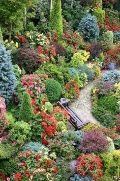 mix of evergreens with perennials.
