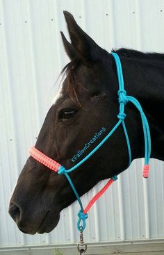 Rope Horse Halter by KnotsByK on Etsy Cute Horses, Pretty Horses, Horse Love, Beautiful Horses, Clydesdale, Rope Halter, Barrel Racing Tack, Western Horse Tack, Horse Halters