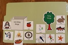 Printable file folder game sorting living and nonliving things. Great for kindergarten science and speech therapy File Folder Games, File Folders, Living And Nonliving, Dolch Sight Words, Kindergarten Science, Letter Sounds, Word Families, Grad, Etsy Store