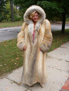 GOLDEN-ISLAND-FOX-FUR-COAT-with-FUR-LINED-HOOD-size-large-Amazing-quality-GLAM