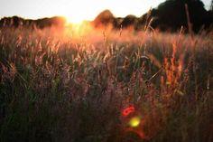 Бабье лето – 200 фотографий