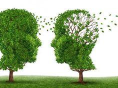 1) je ziet twee bomen in een weiland. De bladeren vormen twee hoofden die naar elkaar kijken. Ook zie je dat bij de ene boom alle bladeren in het achterhoofd wegwaaien. de achtergrond is grauw wit en dit geeft een rustige maar ook sombere uitstraling.  2) dit beeld staat voor een strijd van het geheugen. De wegwaaiende bladeren betekenen het weggaan van het geheugen. Oftewel, een strijd tegen dementie/alzheimer.