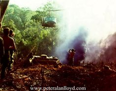 What the Vietnamese jungle looked like during the Vietnam War.