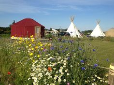 Deepdale Glamping - Tipis (teepees or tepees), yurts & shepherds huts. North Norfolk Coast glamping, luxury camping & posh camping! Perfect for a family holiday or romantic break for two.
