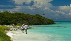http://www.yellowdogflyfishing.com/fly-fishing-vacation-lodges/fly-fishing-lodge-vacation-images/fly-fishing-venezuela-los-rocos-sightcast-outfitters3.jpg