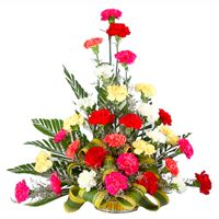 Retail Shop of Carnations - Mix Carnations Basket, Mix Carnations Bouquet, Red Carnations Bouquet and Red Carnations Basket offered by Ahmedabad Gift Shop, Ahmedabad, Gujarat. Carnation Bouquet, Red Carnation, Carnations, Online Flower Shop, Flowers Online, Cake Online, Online Gifts, Buy Flowers, Fresh Flowers