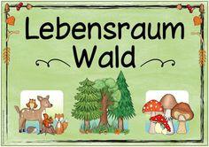 "Ideenreise: Themenplakat ""Lebensraum Wald"""