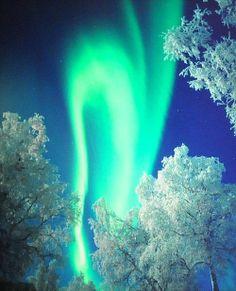 Northern Lights, Finland.