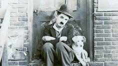 Vida de perros 1918 - Charles Chaplin (Película completa) - Subtitulado ...
