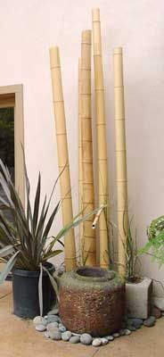 for zen garden