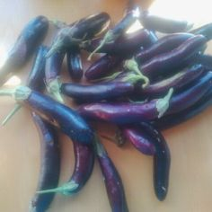 Tortang Talong ~ A Filipino Recipe: Manitoulin Style - Life on Manitoulin