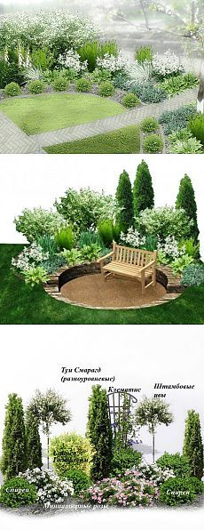 Semi-circular lawn split by path gives a formal feel to a front garden.