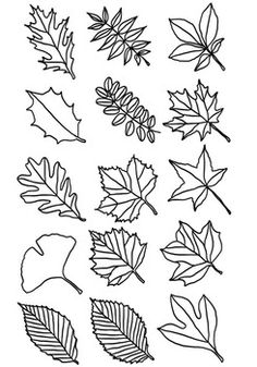 Flower Doodles Discover Leaf Clipart: Types of Tree Leaves Line Drawings Leaf Clipart: Types of Tree Leaves Line Drawings Fall Leaves Drawing, Leaves Sketch, Leaf Drawing, Tree Line Drawing, Drawing Trees, Leaves Doodle, Doodle Trees, Leaf Clipart, Tree Clipart