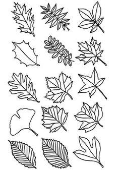 Flower Doodles Discover Leaf Clipart: Types of Tree Leaves Line Drawings Leaf Clipart: Types of Tree Leaves Line Drawings Fall Leaves Drawing, Leaves Sketch, Leaf Drawing, Tree Line Drawing, Drawing Trees, Leaves Doodle, Doodle Trees, Leaf Printables, Leaf Clipart