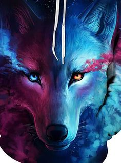 15 Best Ice Wolf Wallpaper Images In 2020 Wolf Wallpaper Ice