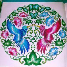 Secret garden - Johanna Basford - Livro Jardim Secreto - Pintei só com lápis de cor Faber castell comum. @jessicasantin
