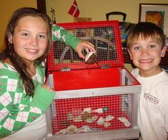 How to Build a Hermit Crab (or other small critter) Cage