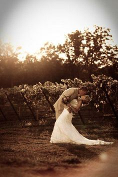 Vineyard Wedding Photo at Seven Springs Winery