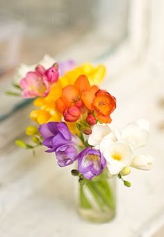 Freesias, my fav flower Freesia Bouquet, Freesia Flowers, Bright Flowers, Spring Flowers, Beautiful Flowers, Indoor Flowering Plants, Pot Plante, Deco Floral, Flower Quotes