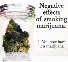Organic BC Weed (@OrganicBCWeed)   Twitter