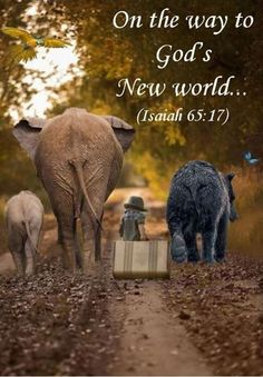 Good bye old world, hello new world! Praise Jah with me! Prayer Verses, Bible Verses Quotes, Mom Quotes, Bible Scriptures, Faith Quotes, Funny Quotes, Spiritual Thoughts, Bible Truth, Jehovah's Witnesses