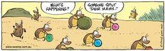 Swamp Cartoon Date: Sep 24, 2014