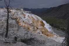 "Jascha Polet on Twitter: ""Busy afternoon at Mammoth Hot Springs, Yellowstone National Park."
