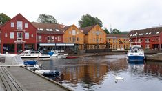 10 Amazing Things to Do in Kristiansand Norway: How to Spend a Memorable Day in the Port of Kristiansand Stuff To Do, Things To Do, How To Memorize Things, Kristiansand Norway, The Fish Market, Holland America Line, Photography Sites, Bus Travel, Cruise Port