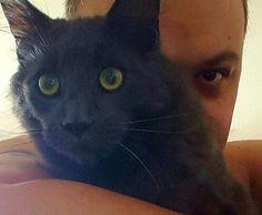 Imko and me #mainecoon #mainecooncat
