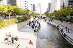 How the Cheonggyecheon River Urban Design Restored the Green Heart of Seoul