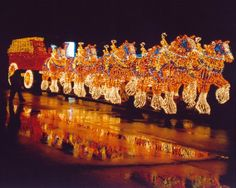 Float of the clydesdales in the Festival of Lights - East Peoria, IL Pretty Horses, Beautiful Horses, Clydesdale Horses Budweiser, Christmas Lights, Christmas Time, Christmas Ideas, Christmas Decorations, Xmas, Budweiser Commercial