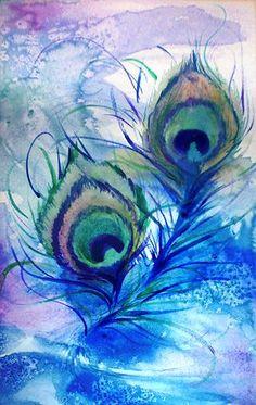 Pauwenveren, aquarel