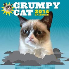 2014 Grumpy Cat Wall Calendar (17 CAD) ❤ liked on Polyvore featuring animals