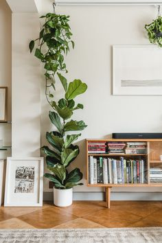 Home Interior Inspiration Home Interior Scandinavian To.Home Interior Inspiration Home Interior Scandinavian To Boho Living Room, Living Room Decor, Vintage Living Rooms, Bedroom With Plants, Living Room With Plants, Diy Bedroom Decor, Diy Home Decor, Interior Home Decoration, Diy Home Interior