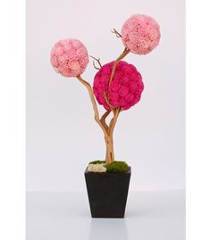 botanical sculpture is a one-of-a-kind, hand-crafted work of art. They are permanent, eco-friendly and require no care. Custom designs available. Orchid Plants, Orchids, Moss Decor, Modern Floral Design, Moss Art, Flower Art, Landscape Design, Flower Arrangements, Decoration