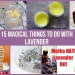 15 Magical Things To Do With Lavender