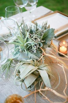 air plant wedding arrangements | Midsummer Wedding on the Shores of Montauk, New York