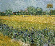 Champ de fleurs près de Arles