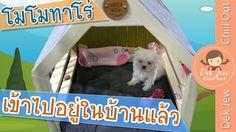 #ยอดนยมในขณะน - ประเทศไทย : เดกจวพาโมโมเขาไปอยในบาน [N'Prim W323] http://www.youtube.com/watch?v=gqFD7TL13Ww