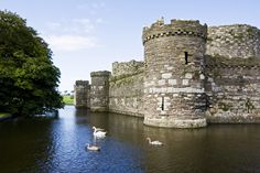 """pagewoman: """" Beaumaris Castle, Isle of Anglesey, Wales. by Jelle Drok """" Anglesey Wales, Castles In Wales, English Castles, Medieval Castle, British Isles, Tower Bridge, Scenery, Around The Worlds, Europe"""